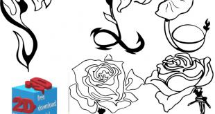 مجموعه وکتور گل تکی کورل دراو